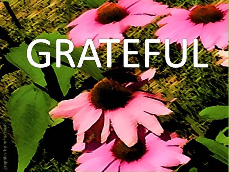 FLOWER PAINT STROKE GRAPHIC grateful
