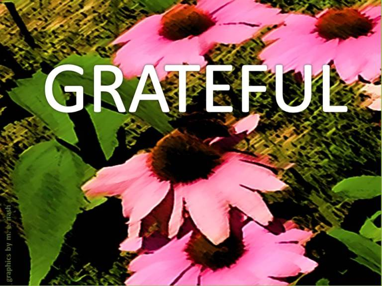 FLOWER PAINT STROKE GRAPHIC grateful