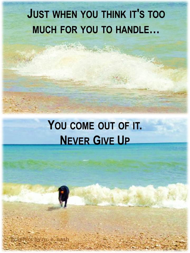 just when you think never give up quote with mal graphic