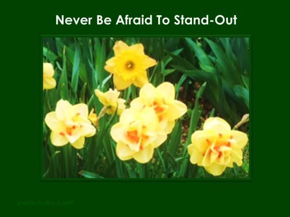 standout v2